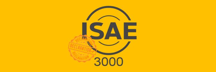 ISAE3000.png
